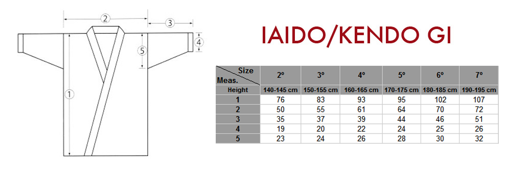 IAIDO_1.jpg